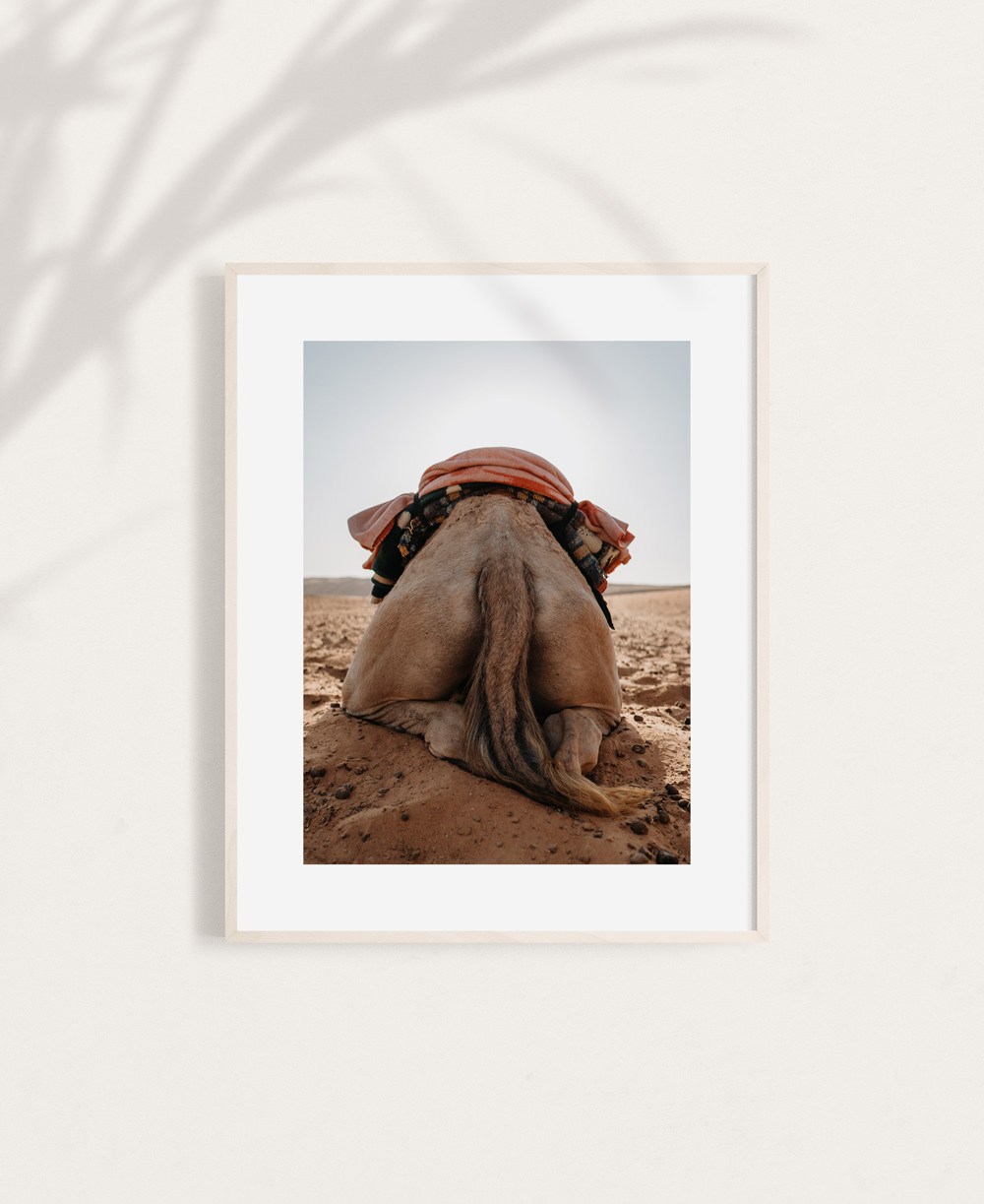 nicischwab-prints-005-camelbooty