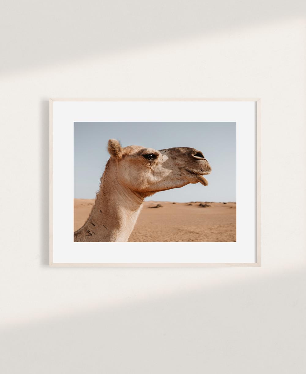 nicischwab-prints-006-camel