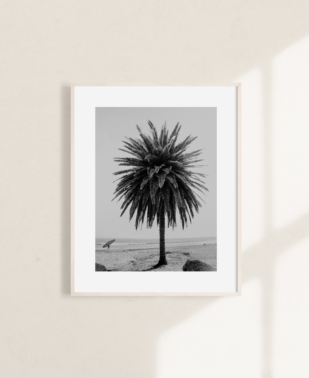 nicischwab-prints-015-california dreamin