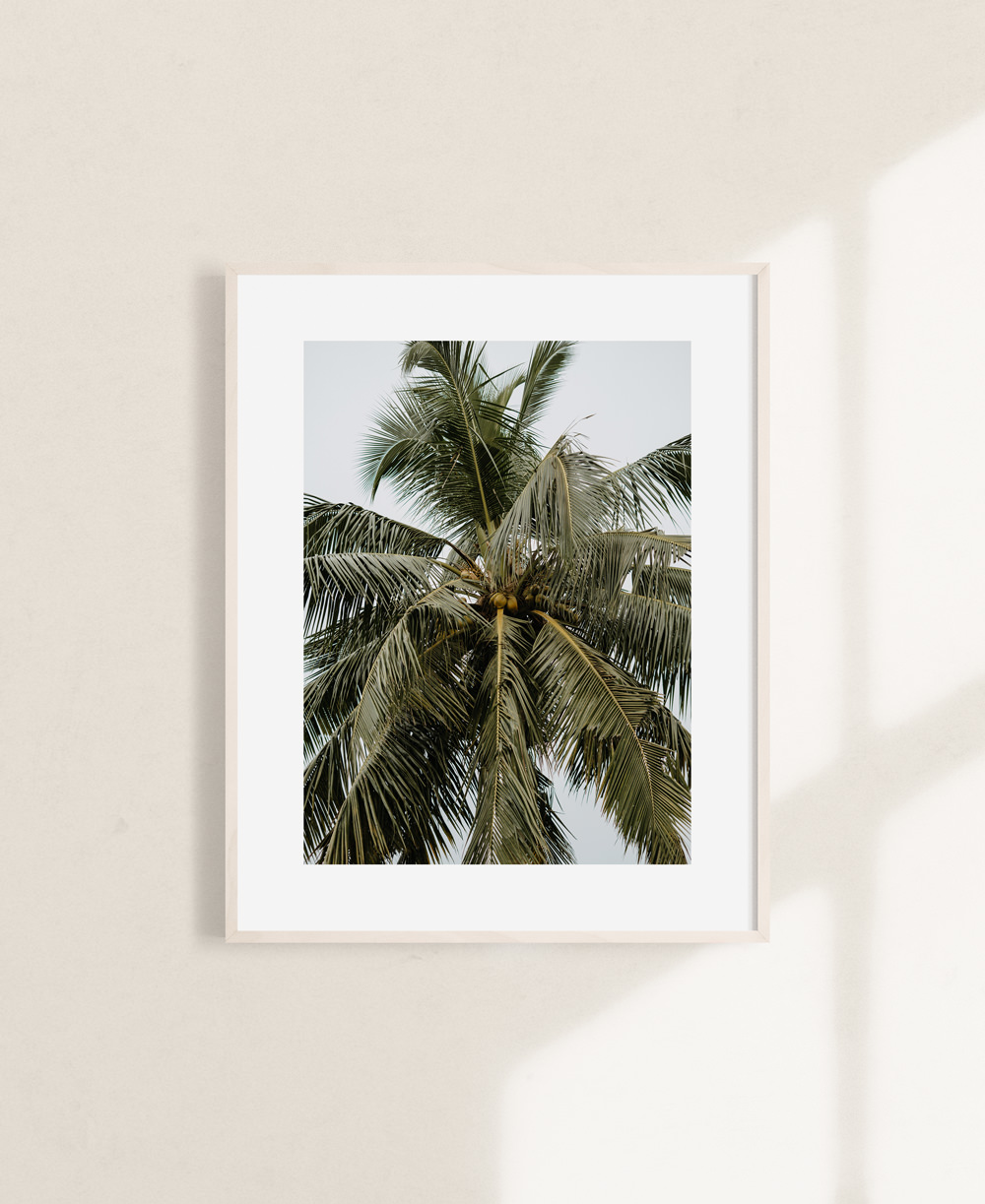 nicischwab-prints-017-palm leaves