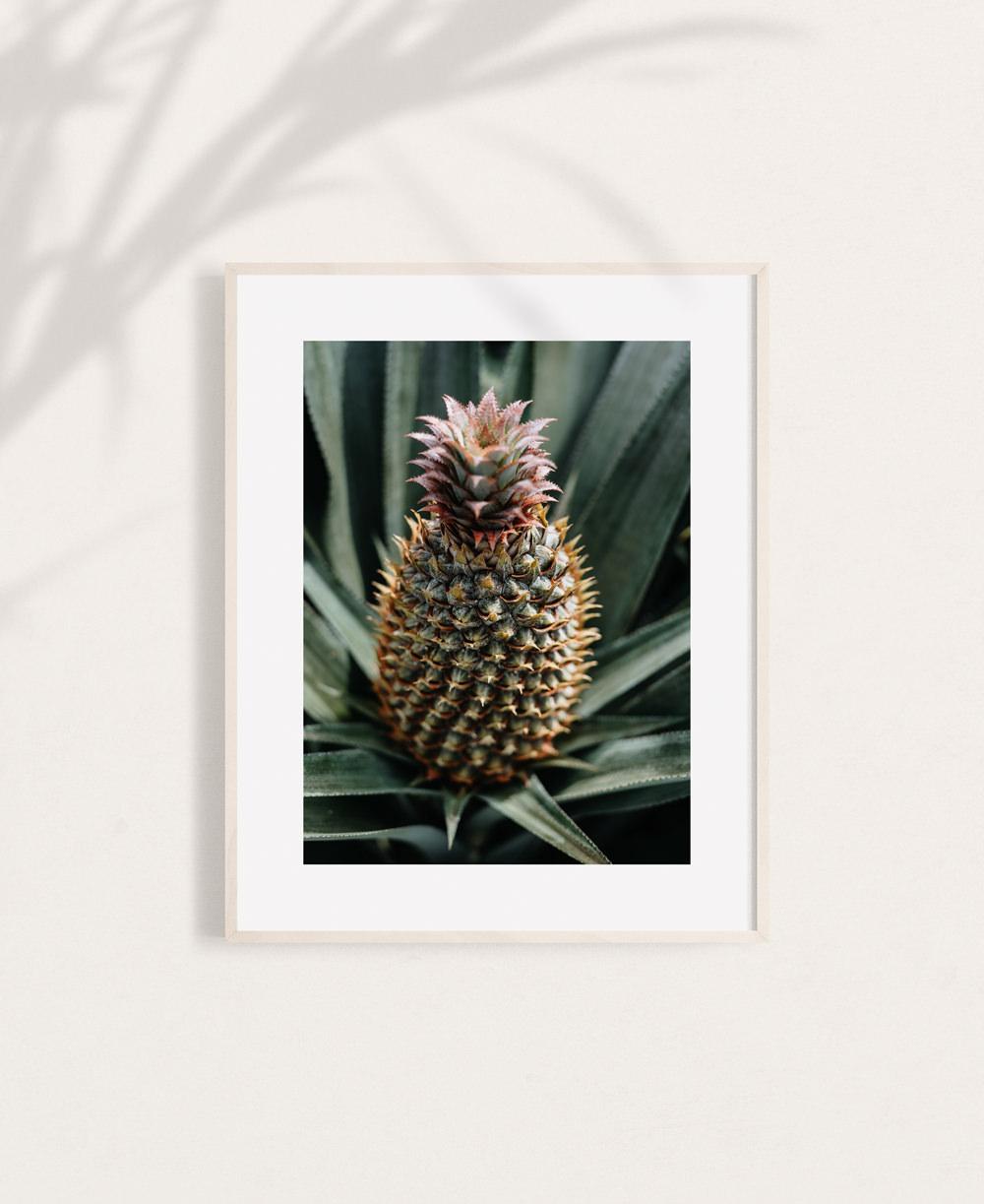 nicischwab-prints-018-Ananas