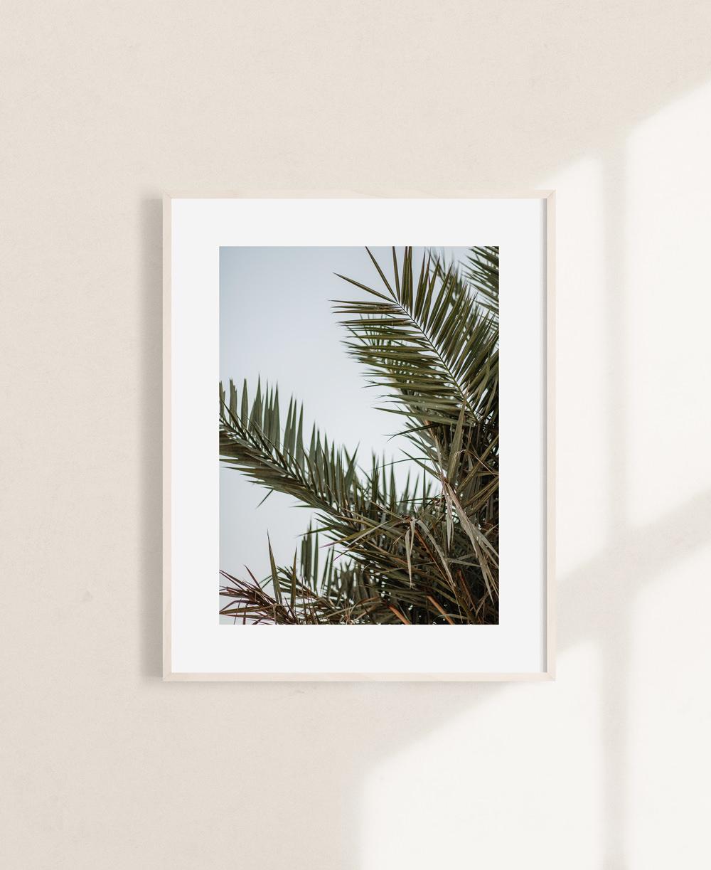 nicischwab-prints-019-palmleaves-02