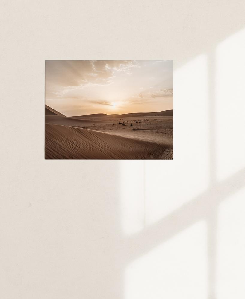 nicischwab-prints-02-001