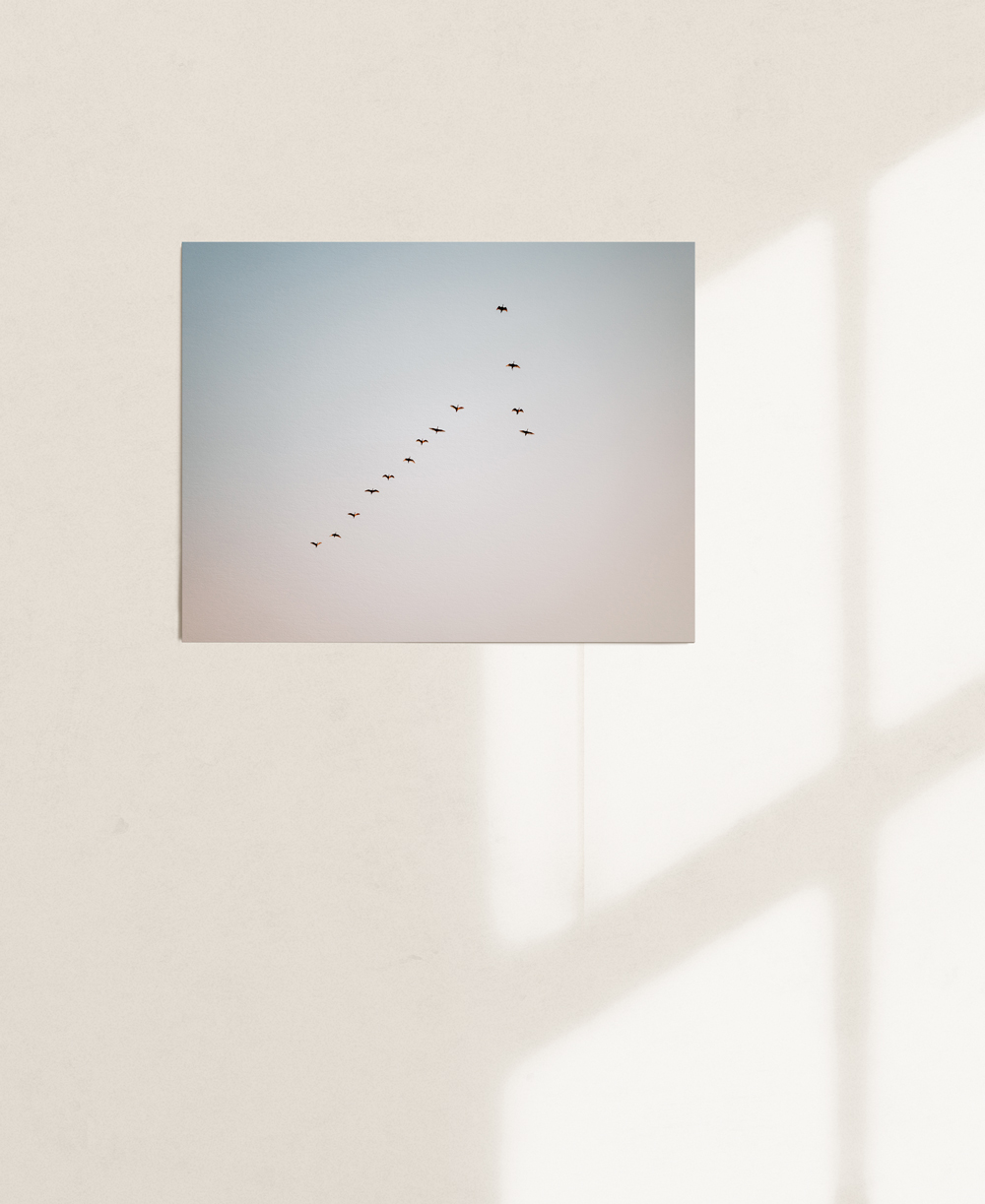 nicischwab-prints-02-002