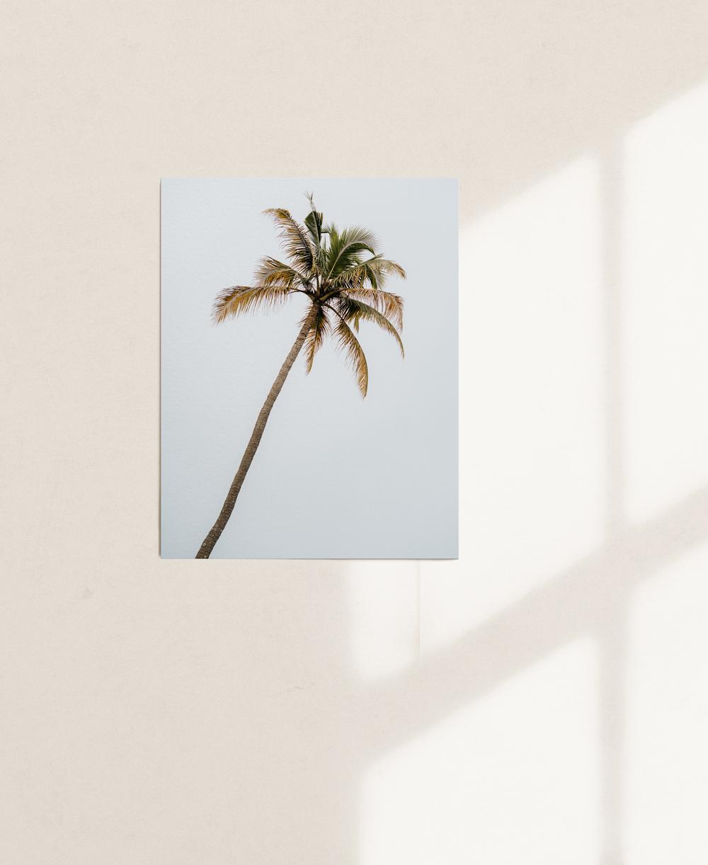 nicischwab-prints-02-006