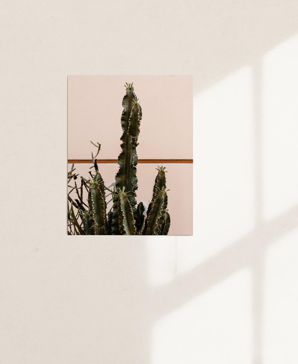nicischwab-prints-02-007