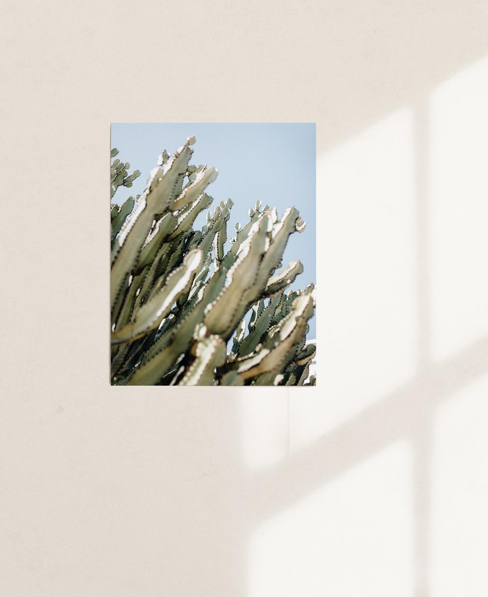 nicischwab-prints-02-012