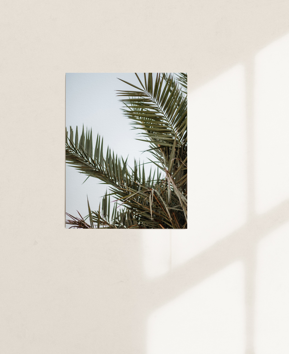 nicischwab-prints-02-014
