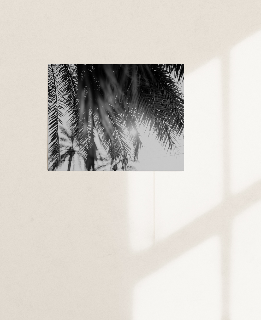 nicischwab-prints-02-018