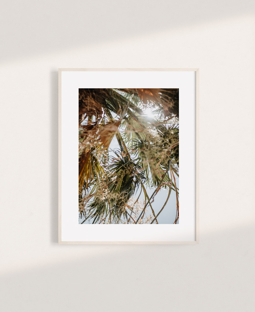 nicischwab-prints-020-summer vibes
